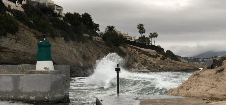 How Do You Survive A Tsunami?