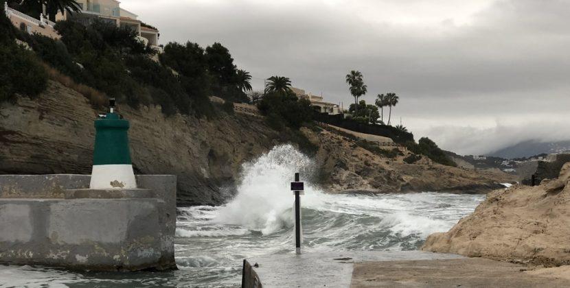 How Do You Survive A Tsunami